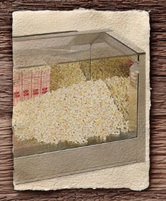 popcornwarmer